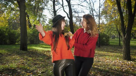 rejoice : joyful meeting, attractive smiling girlfriends happy on a walk together and looking at the fallen yellow leaves in autumn park in the fall season Stock Footage
