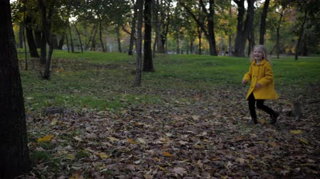 prole : happy smiling girl have fun running in autumn park during fall foliage on a background of trees Stock Footage
