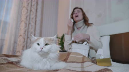 fájó : people and pets, domestic cat sitting on a sofa amid a cold woman sneezing and taking medication, taking care of her health