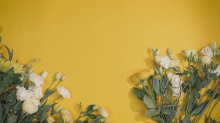 composition of white and yellow flowers for St.Valentines Day with a place for your text, florist unfolds yellow background in fast motion