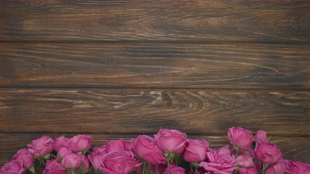 flowers on wooden board with copy space for text, still life of pink roses on background Stock Footage