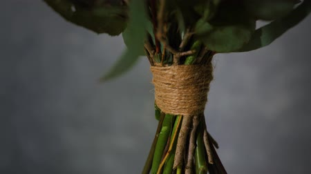 hobby florist, close-up of stems tied with twine in a bouquet revolve on a dark background close-up, flower design