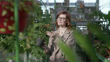 srovnávat : attractive woman examines flowering plants in garden, female with glasses for vision buys decorative houseplants in pots at floristic greenhouse market, concept of home and garden