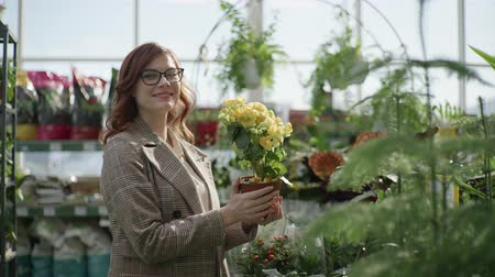 supermarket shelf : portrait of a female florist with glasses for vision choosing decorative blooming plants in pots for home or office design in a flower shop standing on a background of green plants, gardening
