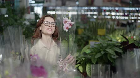 zahradník : young attractive female flower grower with glasses for vision chooses decorative flowering houseplant, in pots in greenhouse of shop for interior decoration of house or garden