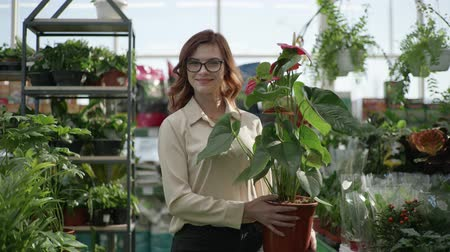 zahradník : portrait of young smiling girl with glasses for vision going away through a greenhouse, in flower shop with flowering ornamental plant in hands background of home plants