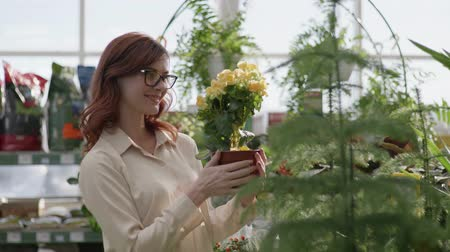attractive girl in glasses for vision holds a blooming decorative flower in a pot, smiles and looks at camera background of green plants in greenhouse of flowering shop