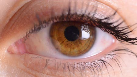 bulva oční : eye macro...zoom in