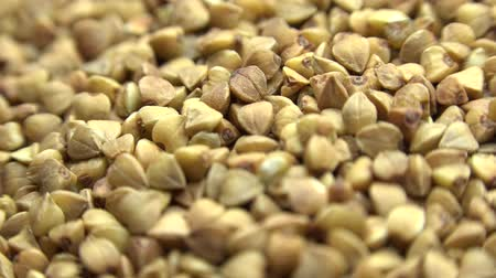 nagy felbontású : High Resolution Macro of Dry Buckwheat Grain. Dolly Shot. 4K UltraHD, UHD