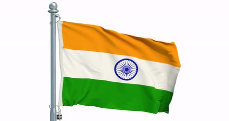 Indian flag waving on white background, animation. 3D rendering