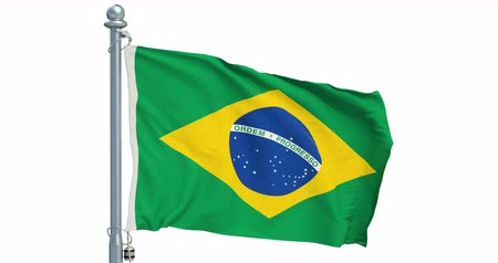 Brazilian flag waving on white background, animation. 3D rendering