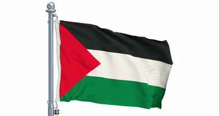 Palestinian flag waving on white background, animation. 3D rendering