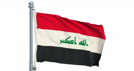 Iraqi flag waving on white background, animation. 3D rendering