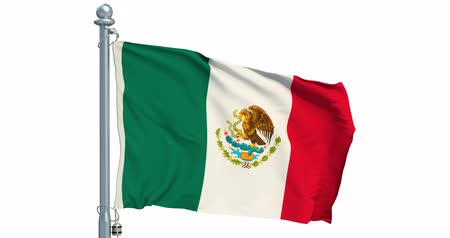 Mexican flag waving on white background, animation. 3D rendering