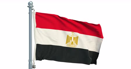 Egyptian flag waving on white background, animation. 3D rendering Dostupné videozáznamy