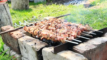 fat burning : Cooking pieces of meat on fire closeup. Cooked pork meat. Barbecue lunch outdoors. Grilled pieces of pork meat. Shashlik prepared on barbecue grill