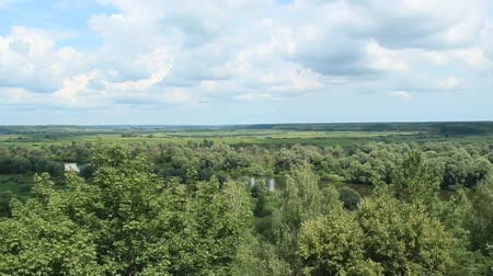 slough : Panoramic landscape. Beautiful landscape on river and swamp from birds eye view Stock Footage