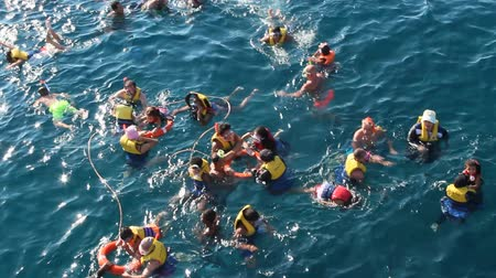 Team of divers with masks and life jackets in water. People with masks look fishes in Red sea. People enjoying summer vacations