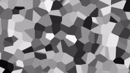 shaping : Abstract fractal black and white animated background