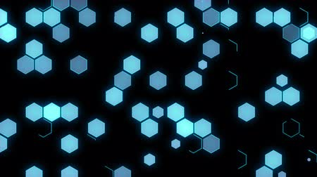 szablon : Abstract background of animated honeycombs Wideo