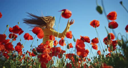 lento : Beautiful girl with long hair having fun outdoors in the poppies field. Slow motion 120 fps. Filmed in 4K DCi resolution. Happy smiling young woman enjoying nature. Crane shot. Vídeos