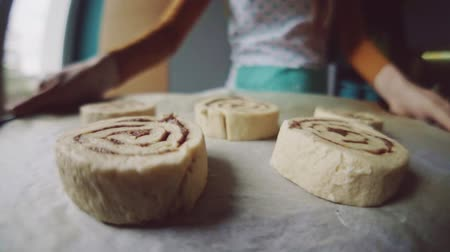 point of view pov : Point of view: cinnamon rolls being put into the hot oven. POV: woman baking sweet buns with cinnamon, putting them into the electrical stove. Slow Motion. Home made bakery. Cozy Cooking at home. Stock Footage