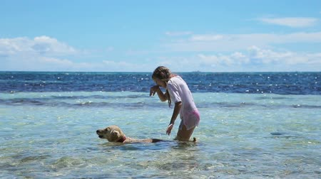filipíny : Young girl and dog playing in the water, the sea on a tropical beach.