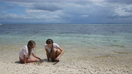 puericultura : Young girls playing on a tropical beach with seashells, sand and corals.