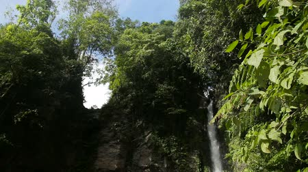cataracte : Waterfall in the jungle.tropical rain forest with waterfall.Waterfall on the island of Camiguin Philippines Vidéos Libres De Droits