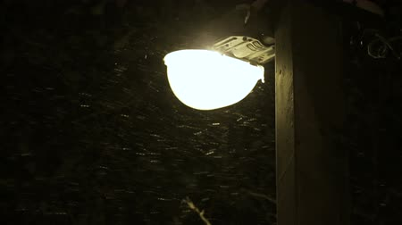 snow flurry : Snow falls near street light in cold winter day.