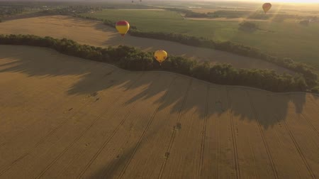 tej : Hot air balloons in the sky over a field in the countryside in the beautiful sky and sunset.