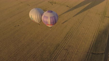 tej : Hot air balloons in the sky over wheat field in the countryside. Aerial view