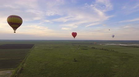 tej : Hot air balloons in the sky over a field in the countryside. Aerial view