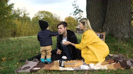 autumns : A young family with son at a picnic in the park on a sunny day.Family having picnic outdoors.Cute family picnicking in the park.Young smiling family doing a picnic on an autumns day.Family picnicking together.4K video,4K.