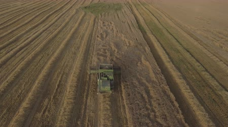 干し草 : Combine harvester on a wheat field at harvest.Aerial view of agricultural land with harvester.Combine harvesting wheat.Aerial view of agricultural land with harvester. Working Harvesting Combine in th
