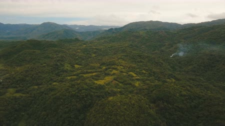 hurma ağacı : Mountains with rainforest covered with green vegetation and trees on the tropical island, landscape. Aerial view: Mountains and hills with wild forest, sky clouds. Hillside rainforest and jungle. Philippines, Catanduanes. 4K video. Aerial footage. Stok Video