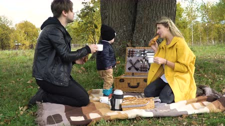 autumns : A young family with son at a picnic in the park on a sunny day.Family having picnic outdoors.Cute family picnicking in the park.Young smiling family doing a picnic on an autumns day. 4K video,4K.