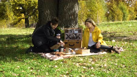 autumns : A young family with son at a picnic in the park on a sunny day.Family having picnic outdoors.Cute family picnicking in the park.Young smiling family doing a picnic on an autumns day.4K video,4K.