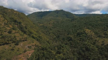 cebu : Mountains with rainforest covered with green vegetation and trees on the tropical island, landscape. Aerial view: Mountains and hills with wild forest, sky clouds. Hillside rainforest and jungle. Philippines, Cebu. 4K video. Aerial footage.