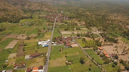 taras : Village in the mountains with farmlands, rice terrace field, trees. Aerial view of Mountains are covered with forest. Bali, Indonesia. 4K video. Aerial footage.