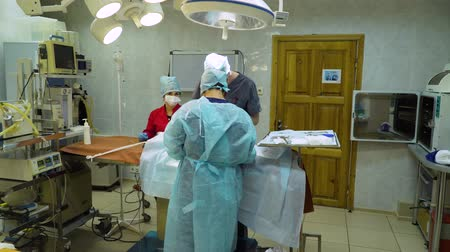operacional : Operational room with Veterinary surgeons make surgery for dog in the operating room of a veterinary clinic. Vets doing surgery in the clinic. Medicine, pet, animals, health care and people concept. Vídeos