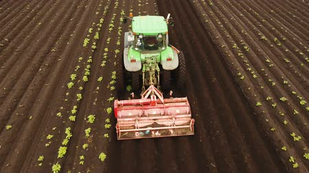 flying video : Aerial view Tractor Hilling Potatoes with disc hiller. Farmer in tractor preparing land with seedbed cultivator in farmlands. Tractor plows a field. Agricultural work in processing, cultivation of land. Farmers preparing land and fertilizing. Agricultural Stock Footage