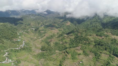 taras : Aerial view of rice terraces on the slopes of the mountains, Banaue, Philippines. Rice cultivation in the North Batad. Mountains covered forest, trees. Philippine Cordilleras.