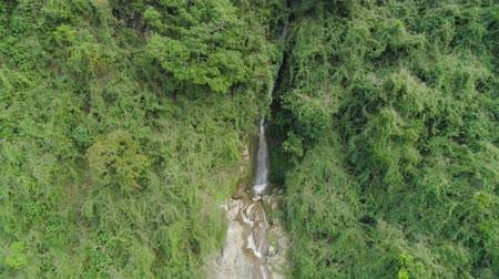 vegetazione : Aerial view of waterfall in the mountains of Filipino cordillera. Waterfall in the mountains. Waterfall flowing on the slopes of mountains covered with tropical vegetation. Philippines, Luzon