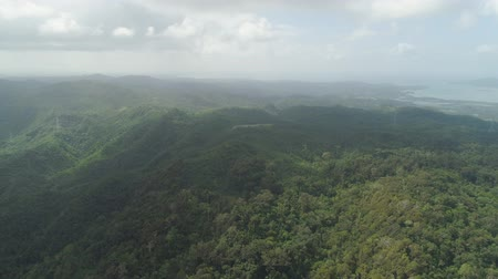 luzon : Aerial view of mountains covered rainforest, trees. Luzon, Philippines. Slopes of mountains with evergreen vegetation. Mountainous tropical landscape.