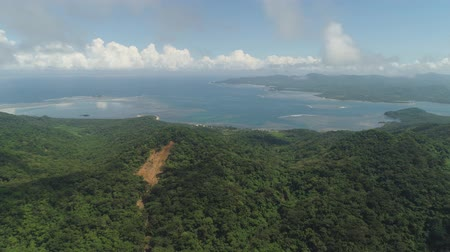 montanhas rochosas : Aerial view of coast of a tropical island Palau with wild beach. Mountains covered with rainforest and trees. Santa Ana, Philippines.