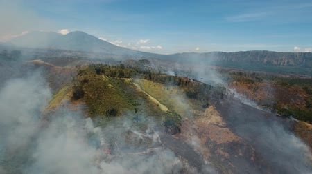 deforestation : Aerial view forest fire on the slopes of hills and mountains. Forest and tropical jungle deforestation for human food farming and export. large flames from forest fire. Using fire to destroy natural habitat and causing large scale environmental damage in  Stock Footage