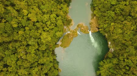 bujný : Aerial river flowing in tropical rainforest Loboc river Philippines, Bohol. Mountain river flows through green forest Aerial footage Landscape.