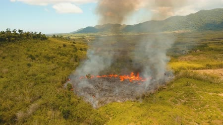 bush fire : aerial footage forest fire on the slopes of hills and mountains, bush. Forest and tropical jungle deforestation for human food farming and export. large flames from forest fire. Using fire to destroy natural habitat and causing large scale environmental d