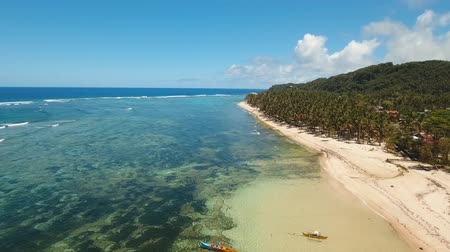 siargao island : Aerial footage sand beach and palm trees on tropical island with turquoise sea. tropical seascape Siargao, Philippines Stock Footage